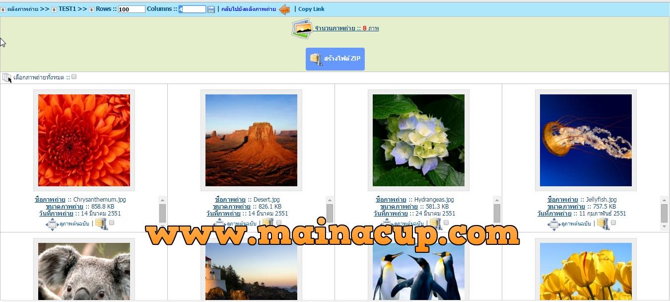ระบบคลังภาพถ่าย Photo album Photo Gallery