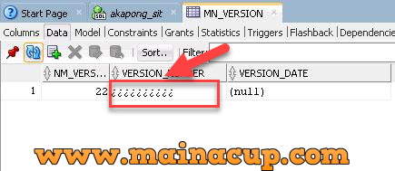 วิธีตั้งค่าให้ Insert ข้อมูลภาษาไทยใน SQL Developer Oracle 11g